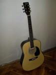 Julia WG41 akusztikus gitár tokkal fotó