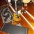 Johnson Solara Classic JS-910 keménytokkal - Kép1