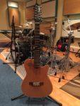 Godin A12 tizenkét húros, elektroakusztikus gitár fotó
